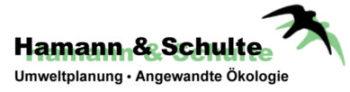 Hamann & Schulte